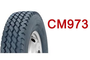CM973-ICO