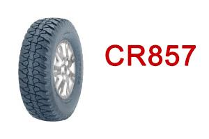CR857-ico