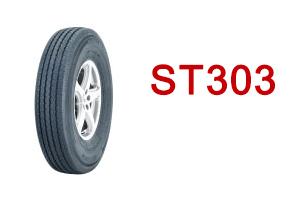 ST303-ico