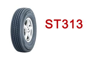 ST313-ico